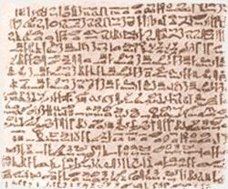 Papyrus Ebers - Aloe Vera Fuerteventura